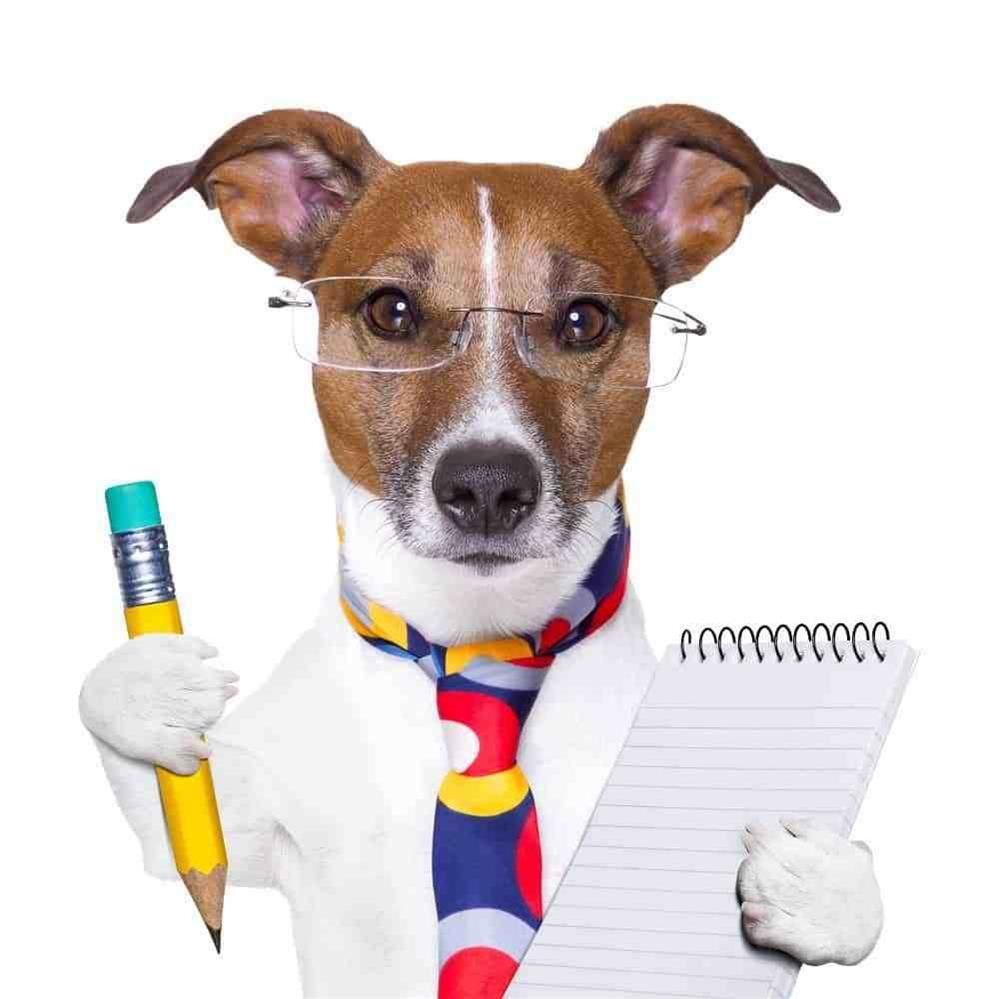 Dog with writing pad and pencil