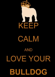 "Image with slogan ""Keep calm and love your bulldog"""