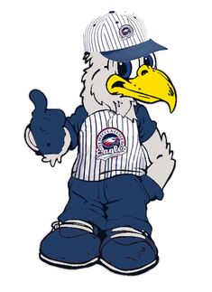 Eagle with team uniform picture